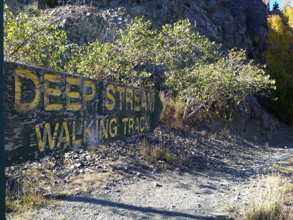 Deep Stream Walking Track