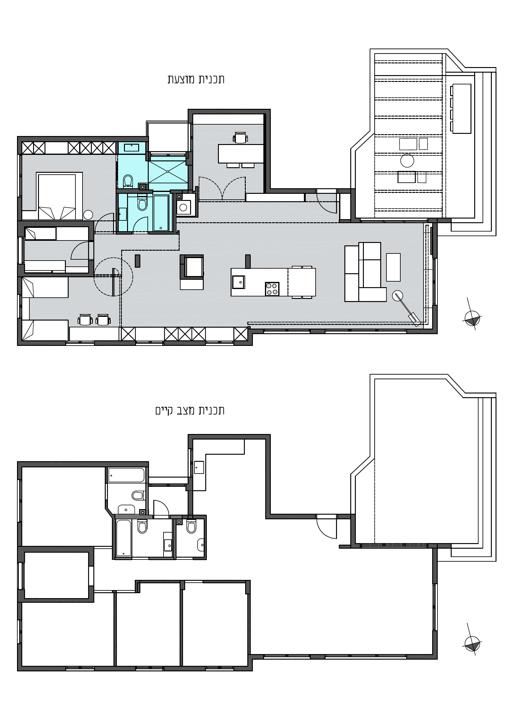 תכנית דירה-זיו קריכלי-נתניה