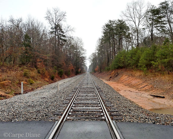 railroad%20tracks%20Greer%20JG%201%2C21_