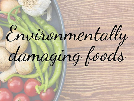 6 Foods That are Environmentally Damaging