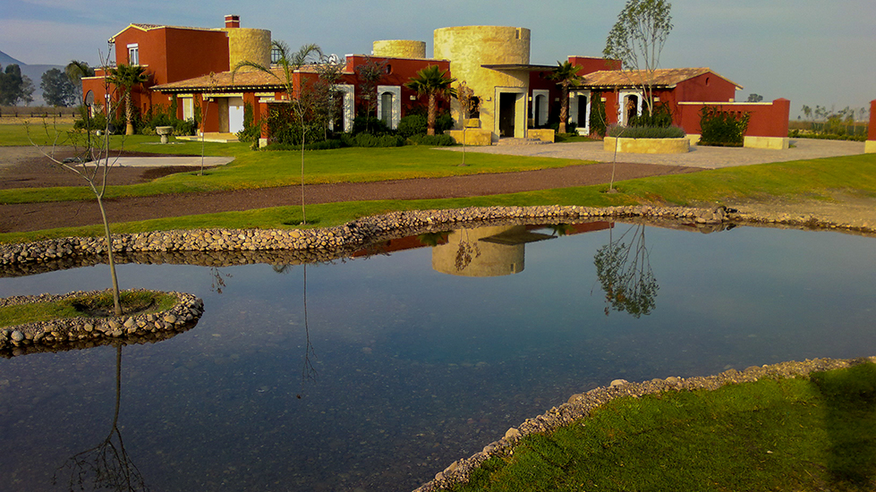 Ponds Design