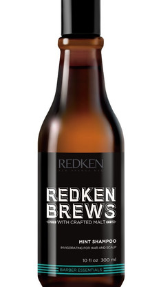 mint shampoo redken brews 300ml