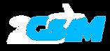 logo 2gsim site macbare.png