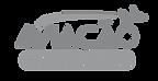 logo vetor aviacao pb_edited.png