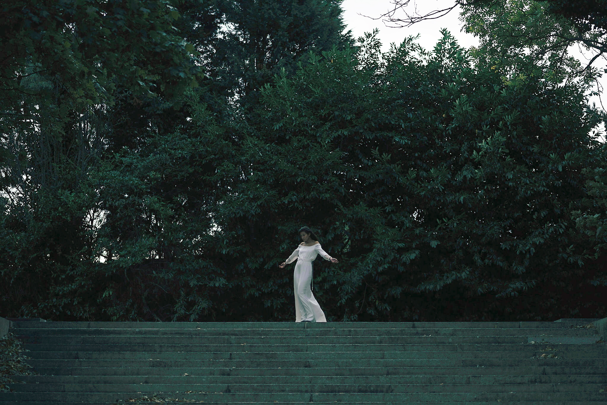 Isolde (4)