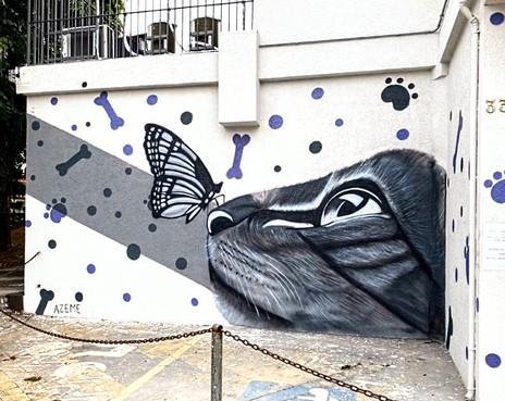 gato graffiti.jpg
