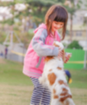 animal-child-contact-332974.jpg