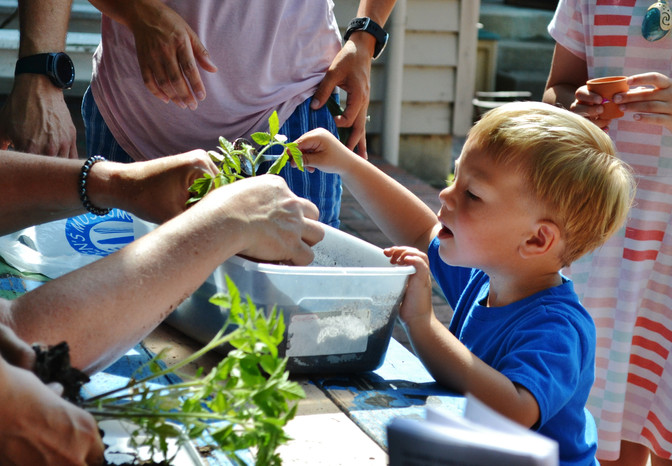 StarNews: Learn healthy food growing, eating practices at Family Farm Day