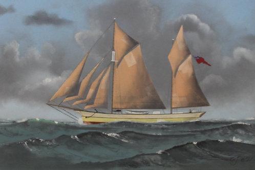 Cornelis Van Dop