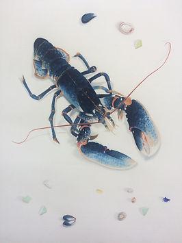 B Lobster w Sea Glass.JPG