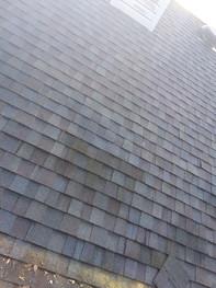 Roof hail damage .jpg