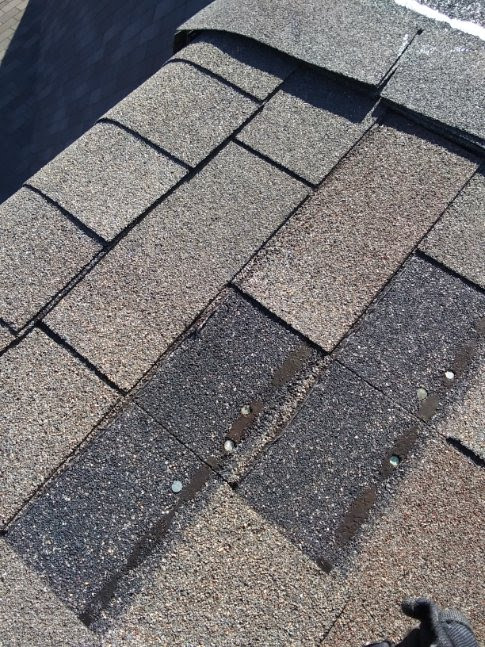 Roof repair Company.jpg