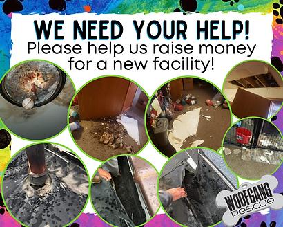 Raise Money - Facility Photos.png