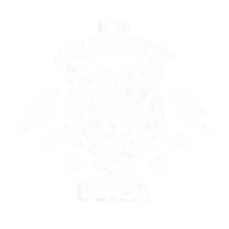 Логотип Детка Тигр.png
