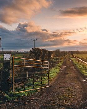 brown-farm-gate-and-green-grass-field-10