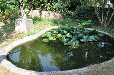 Berdyaev Pond in Clamart