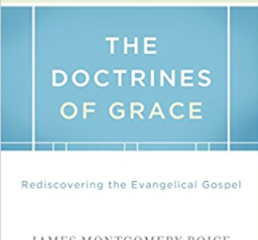 Book Recommendation - The Doctrines of Grace by James Boice