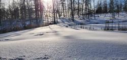 Winter frozen pond
