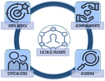 Modelo de Atención en Medicina Funcional