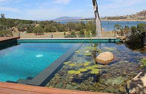 natural-pools-3-1224x786.jpg