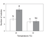 Elevated temperatures negate CO2 effects on legume nodulation and weevils