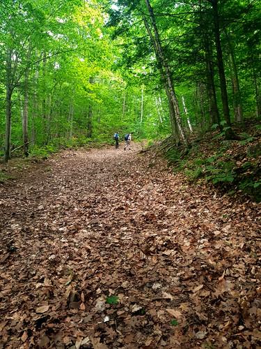Park national d'Oka/Oka National Park (Quebec) Canada  Le Mont du Calvaire d'Oka représente une randonnée sportive et culturelle qui fait remontrer le temps!  Vous êtes sur un chemin de croix aménagé par les Sulpiciens. Qui dit « chemin de croix », dit généralement « bonne montée »!  Le chemin est sinueux et rocailleux.