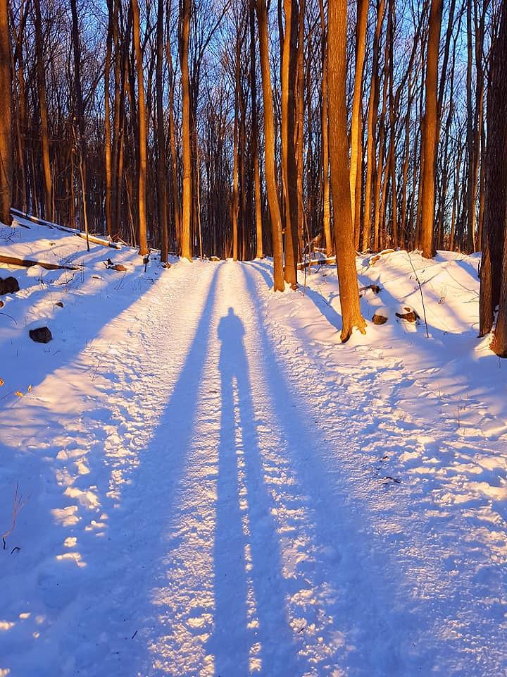 Park national d'Oka/Oka National Park (Quebec) Canada  Quand l'ombre et la lumière s'unissent pour tracer le chemin au sentier du Sommet.