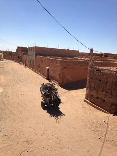 """DÉSERT DU SAHARA MAROCAIN/Morocco Sahara Desert  M'hamid El Ghizlane,  """"la plaine des gazelles"""".  M'hamid El Ghizlane, l'une des premières portes du désert.  Dans un temps pas si lointain, M'hamid El Ghizlane était une oasis, un havre de paix pour les Nomades.  L'aridité, la sécheresse et les frontières ont eu raison de la vie itinérante de la plupart des Nomades.  On y accède facilement, des aéroports internationaux de Casablanca, Marrakech ou Ouarzazate puis par la route en direction de Zagora.   C'est dans ce lieu que la majorité des dépars pour les excursions se font pour vivre le massif dunaire de l'Erg Chigaga et l'Erg Lehoudi, un lieu idéal pour faire l'expérience d'un désert sauvage.  M'hamid El Ghizlane, « the gazelles plain »   M'hamid El Ghizlane, the last village before the vast expanses of the Sahara. The village is part of a nomadic area.  Due to the land's barrenness and dryness, and the shifting national borders, a great number of nomads have abandoned their itinerant lifestyle. However, the people of M'hamid treasure the traditions of their ancient lifestyle, and preserve the noble legacy of their ancestors.  M'hamid El Ghizlane has established itself as the main departure point for desert excursions, particularly to the dunes of Erg Lehoudi and Erg Chegaga."""