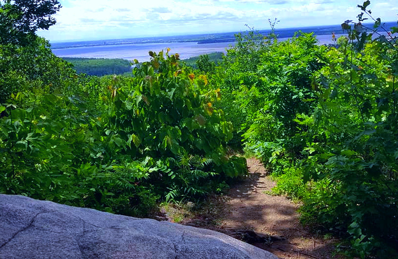 Park national d'Oka/Oka National Park (Quebec) Canada  Tout en haut du sentier du Calvaire d'Oka, hiver comme été, une vue exceptionnelle s'ouvre sur le lac des Deux-Montagnes et les Adirondacks. Tout simplement magnifique et apaisant.  Winter and summer alike, the top of the Calvaire d'Oka trail provides an exceptional view of Lac des Deux-Montagnes and the Adirondacks. Soothing and magnificent.