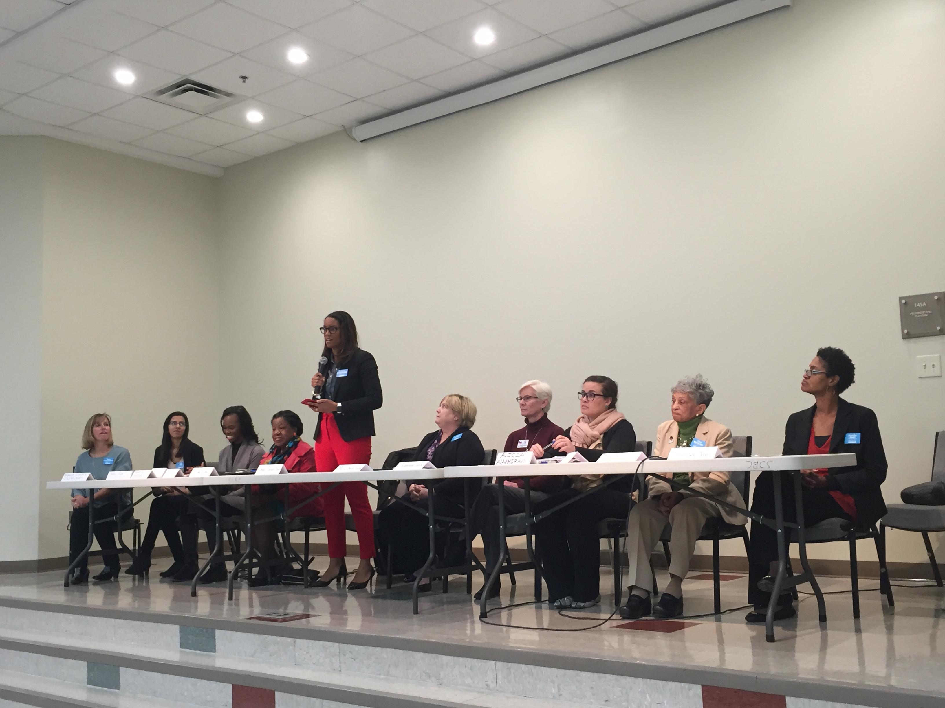 Democratic Female Committee Panel