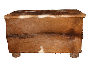 cowhide covered trunk