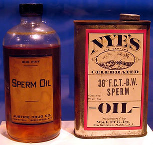 Sperm Oil, Gun Oil, Musket Oil, Whale Oil, Sperm Whales, Baleen, Industrial use of whale, whalebone, whale oil industrial revolution, whale oil guns, sperm whale oil guns, whalebone glasses, whalebone corset