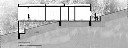 corte longitudial