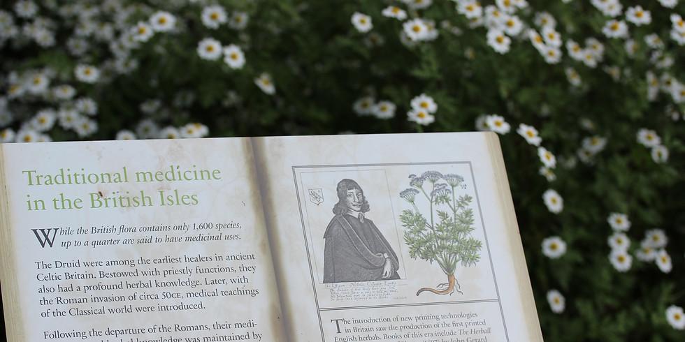 新コース:英国発 植物療法についての説明会