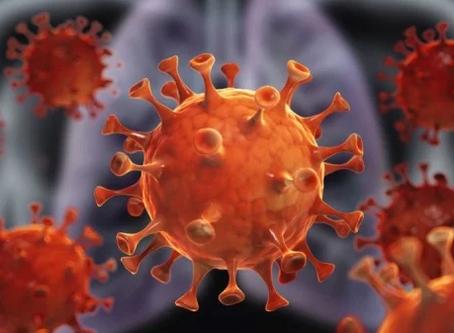 让全世界陷入恐慌的Coronavirus新冠病毒,让我们明白:未来拼的不是财力和权力,而是免疫力