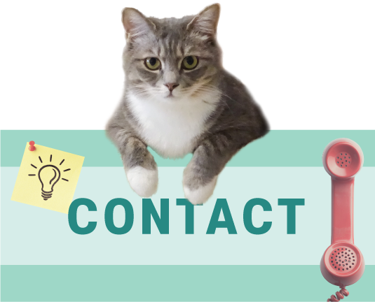contact_R.png