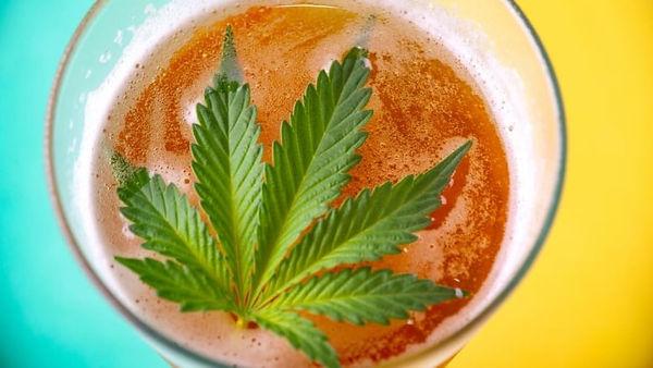 cannabis-beer.jpg