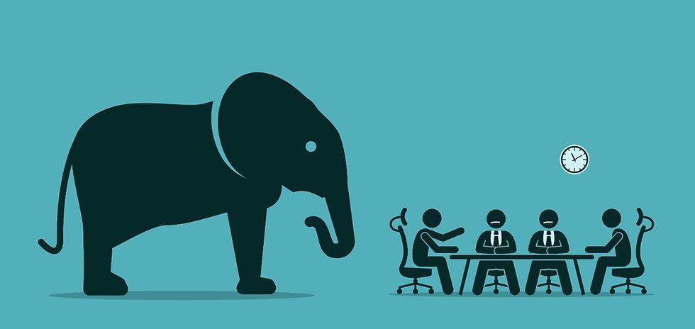 elephant%20in%20the%20room_edited.jpg