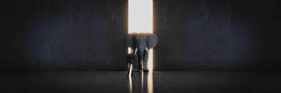 elephant footer.jpeg