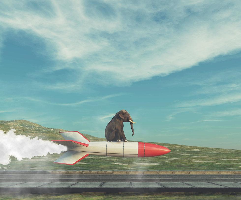 elephant on rocket.jpeg