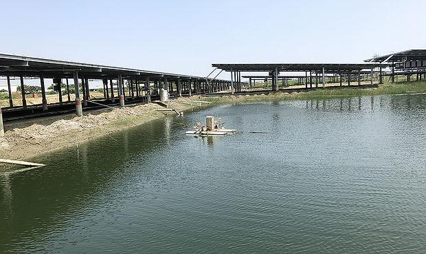 漁電共生場域