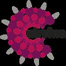 cropped-nirvino_logo250200-192x192.png