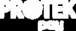 Protek Pay Logo_HiRes_White.png