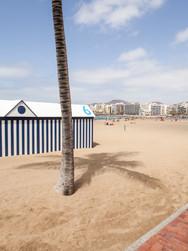 Beach 01_04_MG_1758.jpg