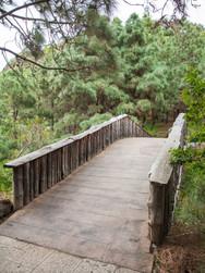Bridge 01_02_MG_0907.jpg