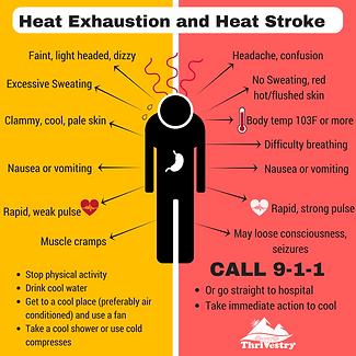 heat-1038x1038.png