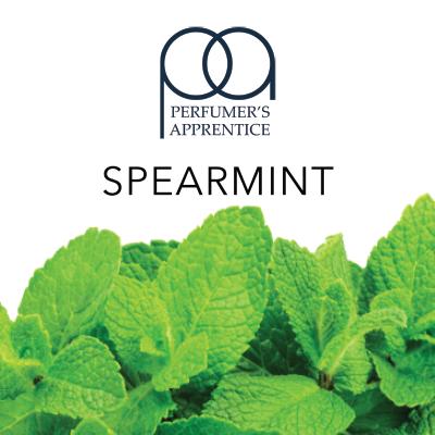 Ароматизатор TPA/TFA Spearmint Flavor