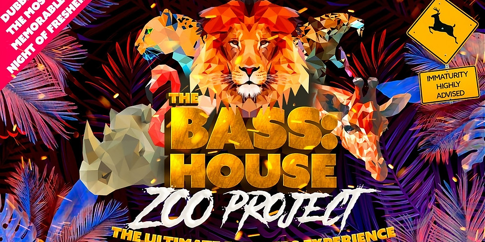 The Bass:House Zoo Project: Bournemouth