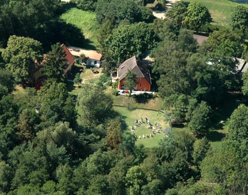Flug Luftbild Finki mit Herz 079_kopiert