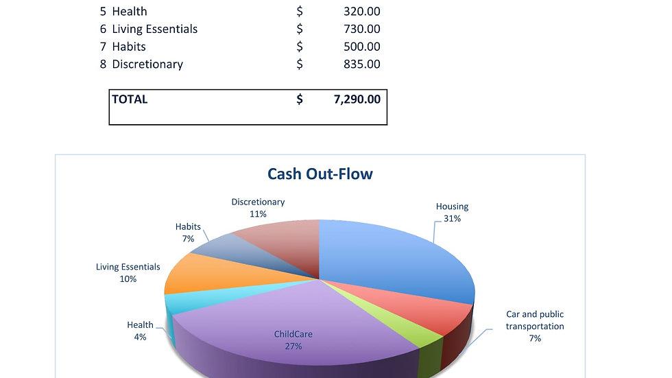 Monthly Budget & Net Worth Statement